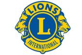 Banner_Lions